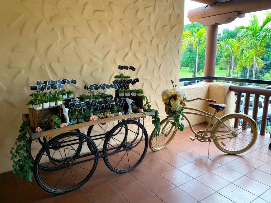 Inidan-Tea-Cart-+-Bike